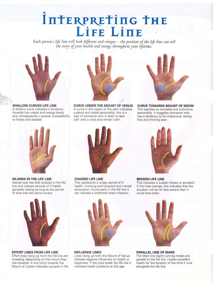 Palmistry for dummies    read your own palm! | Naomi D'Souza